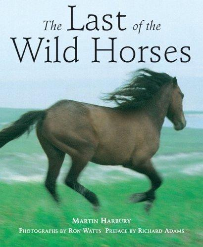 Download The Last of the Wild Horses