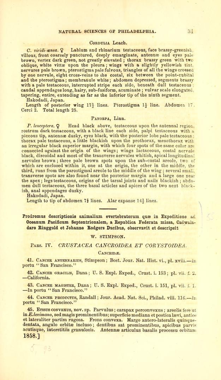 Pars. IV. Crustacea Cancroidea et Corystoidea